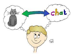 Le chat et le mot chat